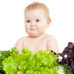 Прикорм ребенка. Часть 1 – о еде и воде